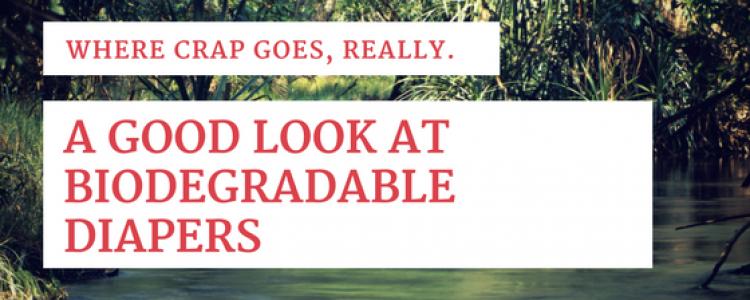 The Not So Degradeable Biodegradeable Diaper